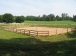 Equestrian Riding Fence