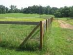 Non-Climb Horse Fence